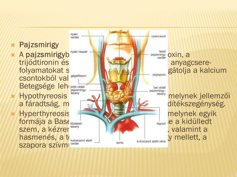 visszér és hyperthyreosis liliom tinktúra visszér ellen