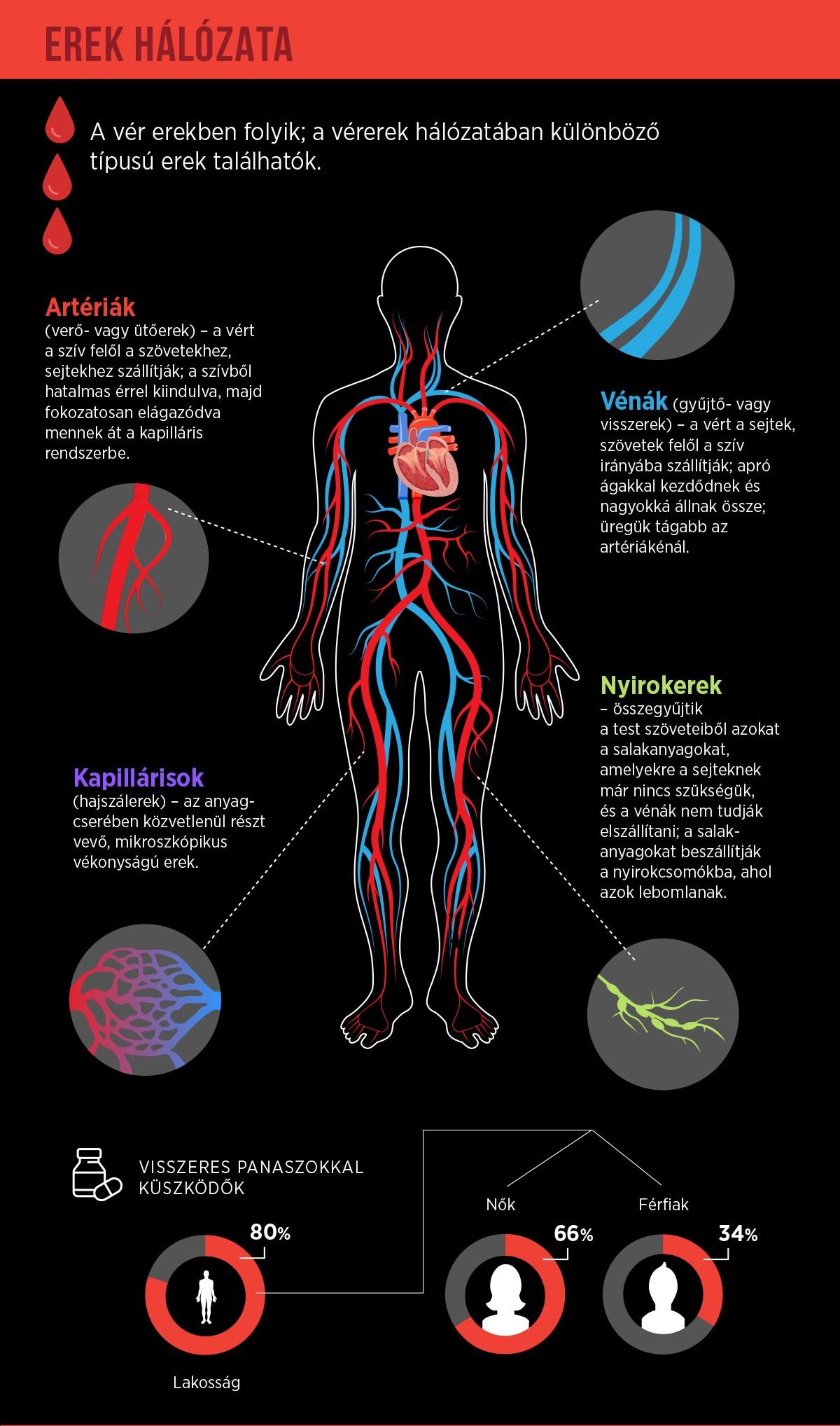 a varikózisos vénák nagysága