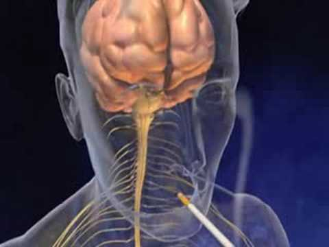 a visszerek infúziója a lábak varikózisának tünetei és kezelésük