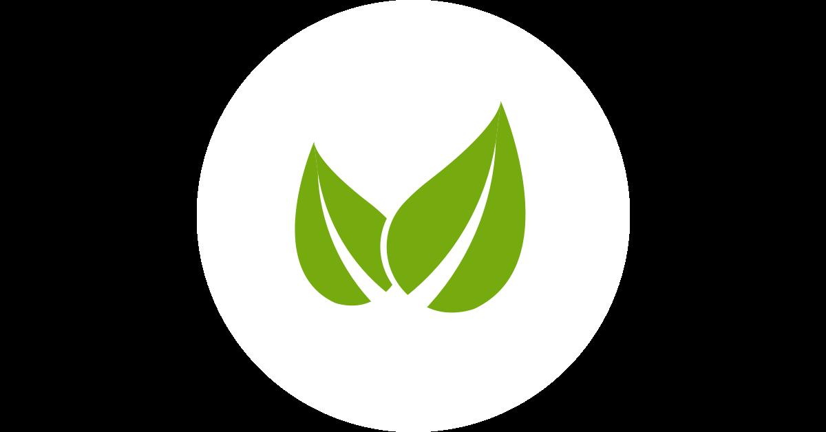 Priessnitz Vein véna és visszér krém - ml: vásárlás, hatóanyagok, leírás - ProVitamin webáruház